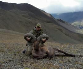 Первая охота на Дагестанского Тура