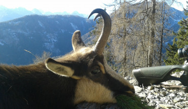 Úspešné sprevádzanie Alpy 2015