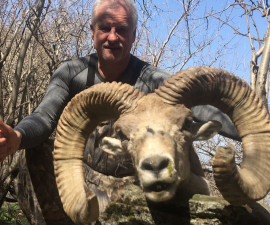 Охота на барана Северцова