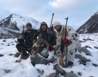 Якутия, якутский снежный баран 2017