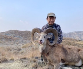 Hunting for the Punjab Urial  in Pakistan