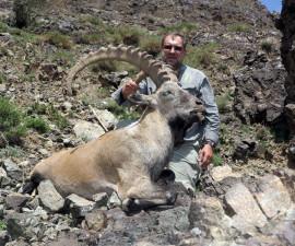 Охота в Монголии