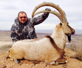 Февраль 2014. Охота в Иране  на Персидского козерога, Кермансаого и Араксаого муфлонов и Транскаспийского уриала