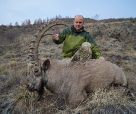 Охота на сибирского козерога в Саянах