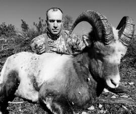 Охота на Колымского снежного барана: неожиданные сюрпризы горного рельефа и пять суток в поисках трофея