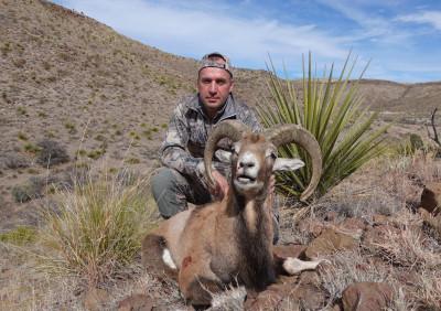 Охота на Красного барана в Техасе