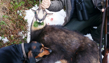 Охота в Австрие