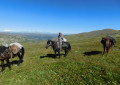 The hunt in Altai mountains