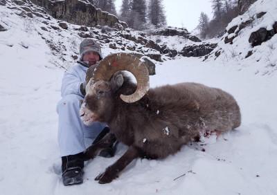 Двойной экстрим на охоте на Якутского снежного барана