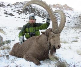 Охота на центрально-азиатского козерога в Казахстане