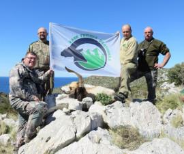 Охота на далматинского барана и гибридного козла Кри-Кри