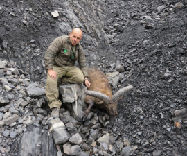 Охота на дагестанского тура