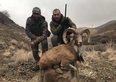 Охота в Иране - декабрь 2018