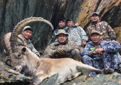 Охота на хангайского козерога