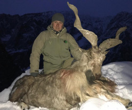 The hunt on Kashmir Markhor