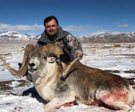Охота на Hume argali Киргизия