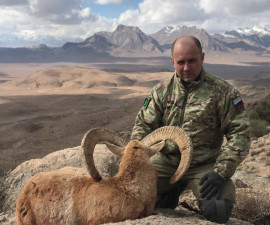 Охота на Ширазского муфлона в Иране