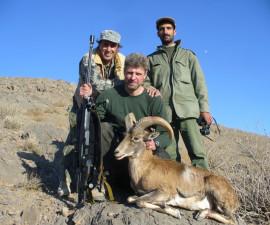 Охота на керманского барана