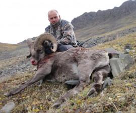 Охота на корякского барана