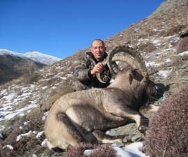 Козерог, Киргизия