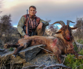 Охота на одичавшего козла (Новая Зеландия)