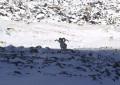 Фоторепортаж с памирских высот