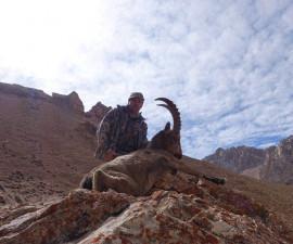 Восхождение на горные вершины Памира.  Охота в Таджикистане на Среднеазиатского козерога