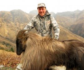 Hunt for Himalayan Tahr