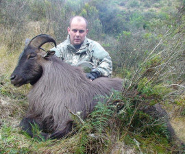 Охота на новозеланского тара
