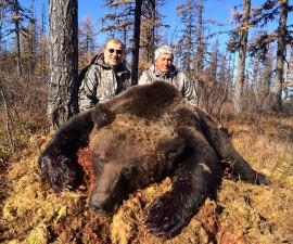 Медведь бурый сибирский РСК
