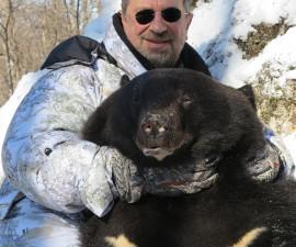 Медведь гималайский РСК