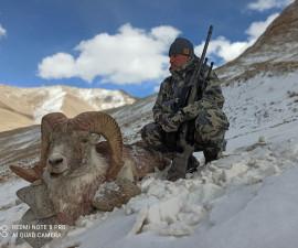 Охота на Аргали Брукей Матиссона в Таджикистане