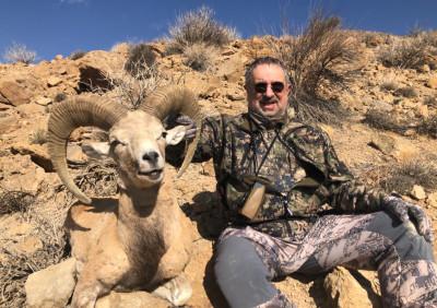 Охота на  Ширазского муфлона  и Газель Джабир в Иране