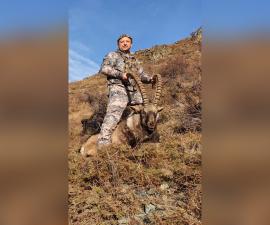 Сибирский козерог