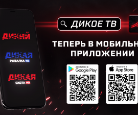 DIKOE TV is now in the mobile app!