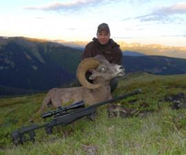 Охота на толсторогов на юге Канады
