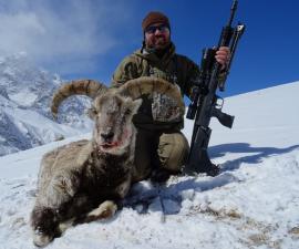 Охота на голубого барана в Пакистане