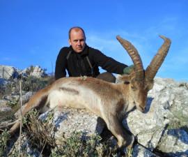 Охота на козерога Ронда
