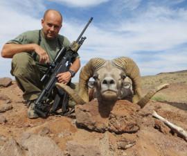 Охота на гобийского  аргали