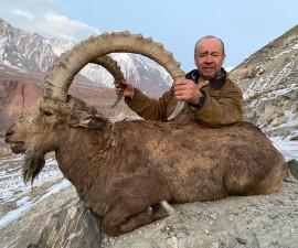 Козёл горный Центр-Азиатский в Таджикистане
