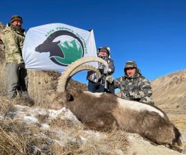 Охота на Центрально-Азиатского козерога в Кыргыстане в 2020 году.