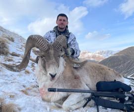Охота на  Аргали Хьюма в Кыргыстане