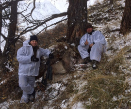 Сибирский козерог.