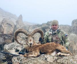 Охота на аракского и армянского муфлонов в Иране