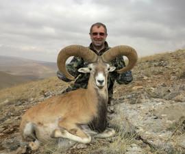 Отчет по охоте в Турции