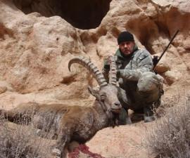 Охота на центрально-азиатского козерога