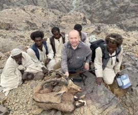 Нубиский козерог. Судан