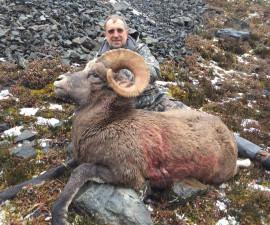 Охота на якутского и охотского баранов